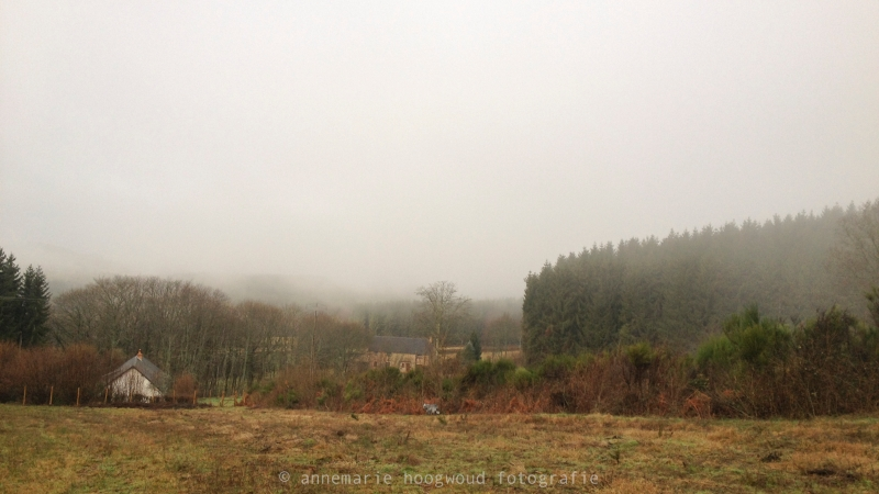 Looking down to the garden, from the top of  Gite\'s land. 2012_morvan-390